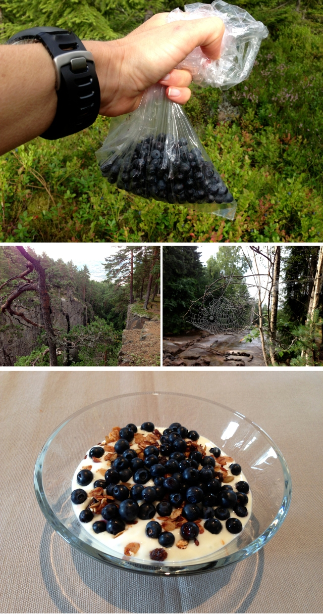 Løpetur og blåbærplukking 2