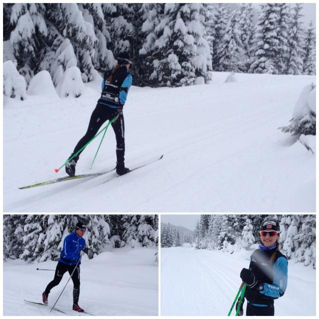 Rolig skitur i Finnemarka