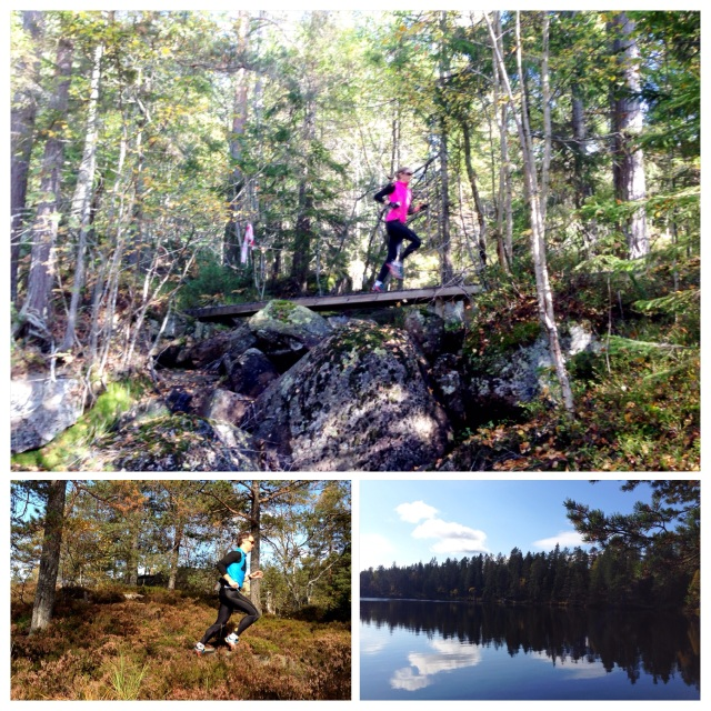 Løpetur i Drammensmarka 5