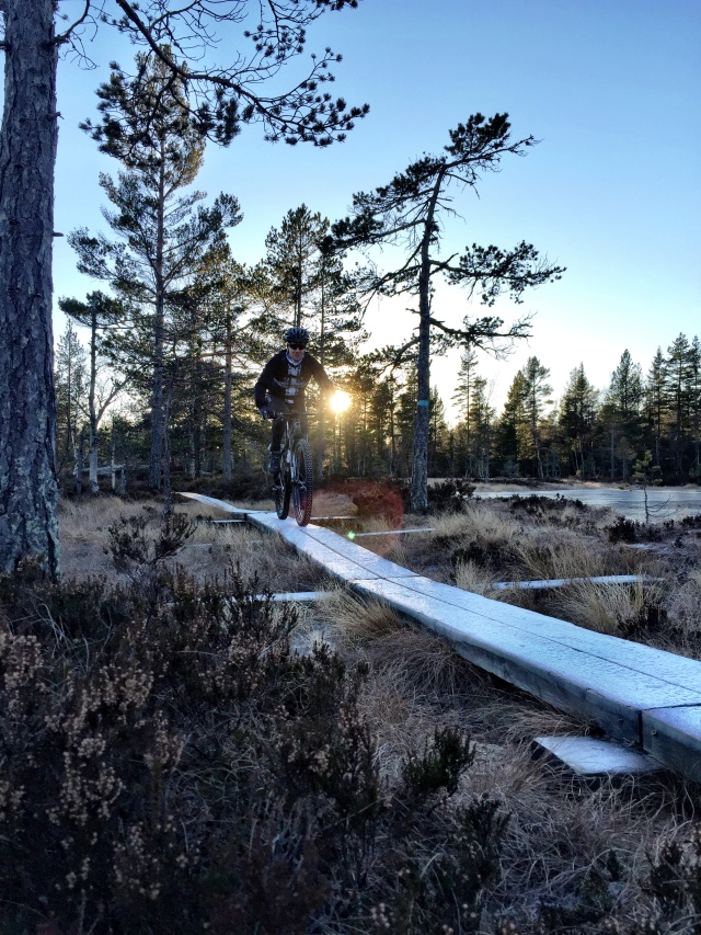Vintersykling piggdekk Oslo Sportslager 6
