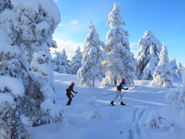 Skitur i Drammensmarka 4