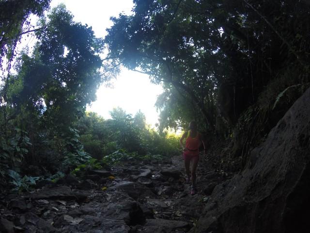 kauai-happytimes-12