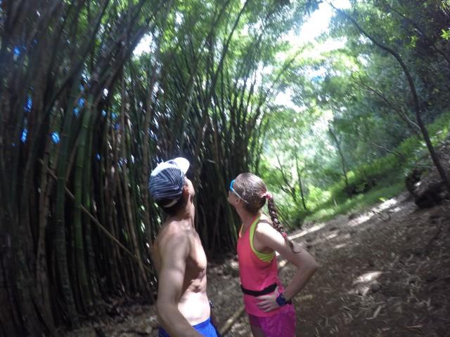 kauai-happytimes-33