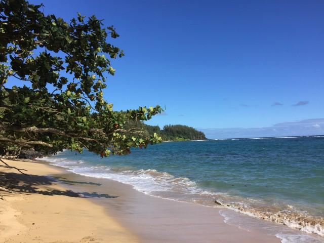 kauai-happytimes-59