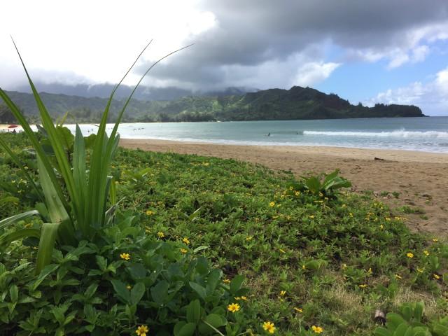 kauai-happytimes-62
