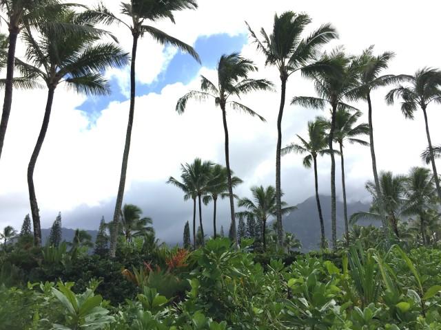 kauai-happytimes-63